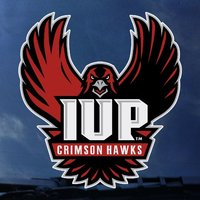 Decal, Outside Application, Oversized, Full Hawk Logo