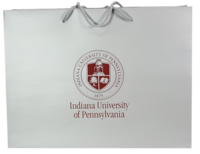 Gift Bag, Large, Silver with IUP Seal