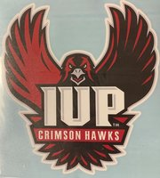 LARGE VINYL DECAL WITH IUP FULL HAWK OUTSIDE APPLICATION