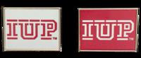 Lapen Pin, IUP Logo