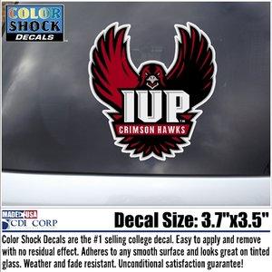 Decal, Outisde Application, Full Hawk Logo