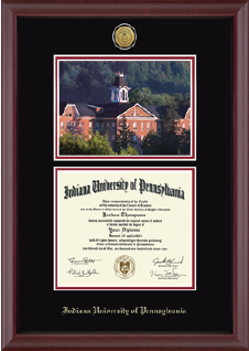 diploma frames the co op store